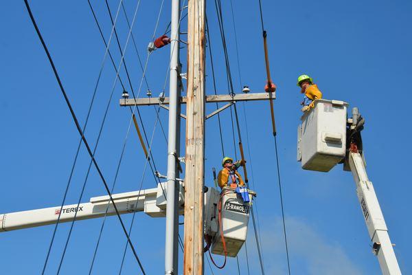 electricians Hamilton NZ